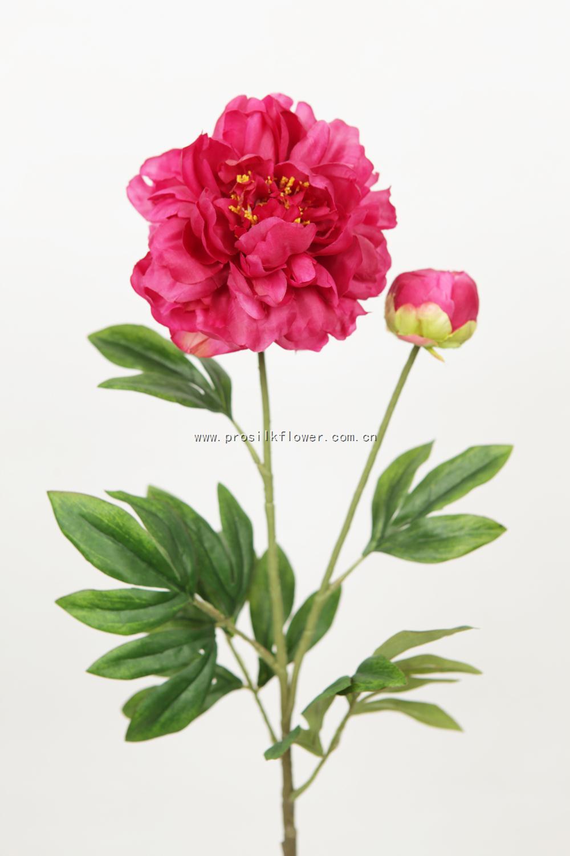 88cm 芙蓉牡丹 X2 玫紅