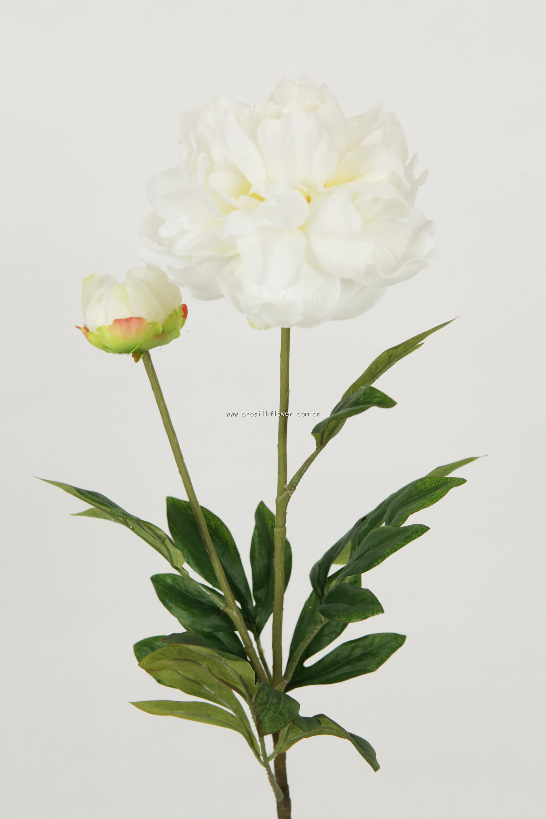 88cm 芙蓉牡丹 X2 奶白色
