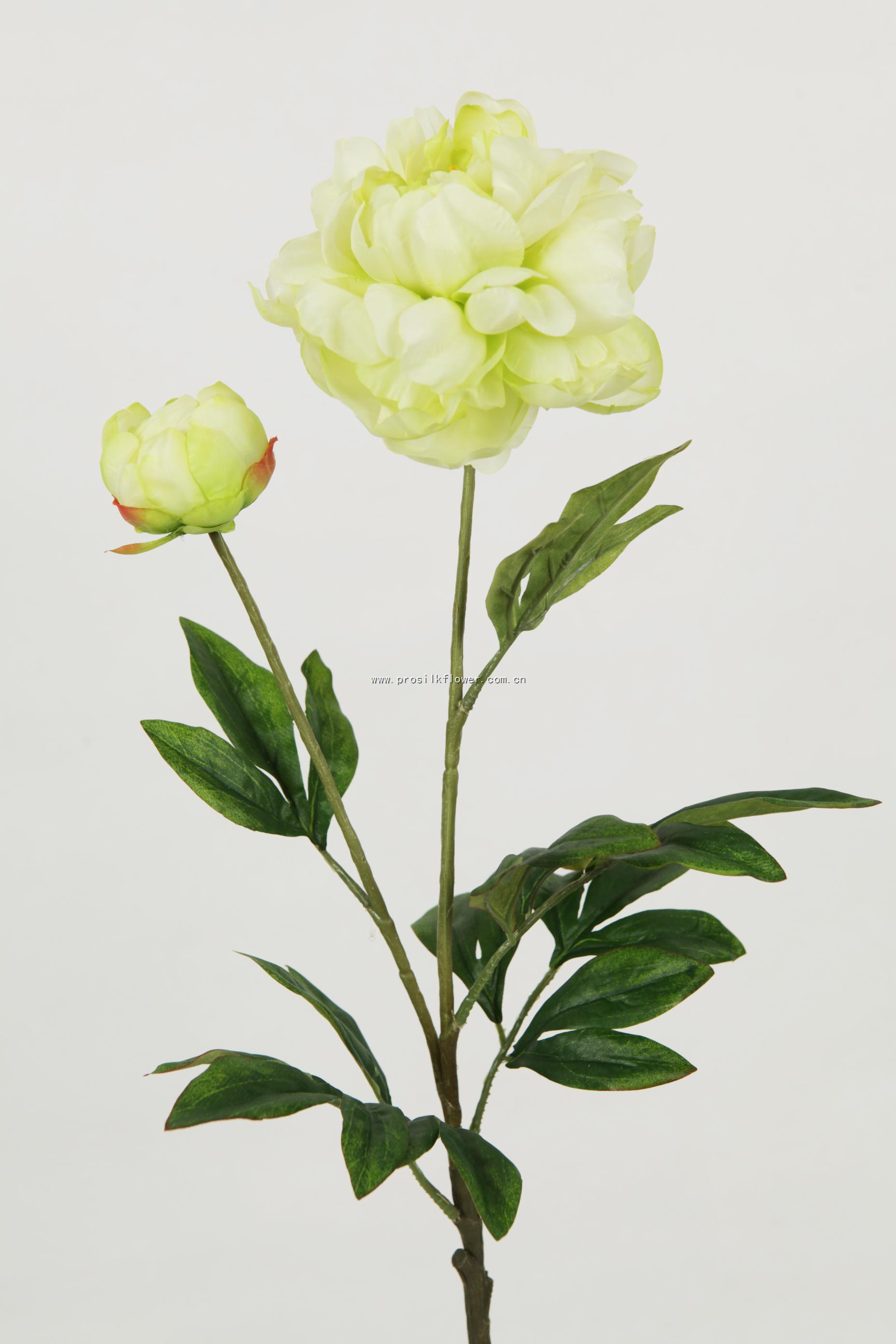 88cm 芙蓉牡丹 X2 綠色