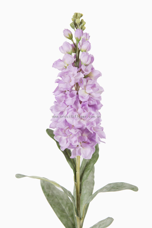 80cm 紫羅蘭 X23 淺紫